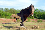 T-rex.jpg